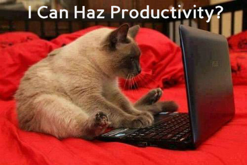 cat-productivity-caption